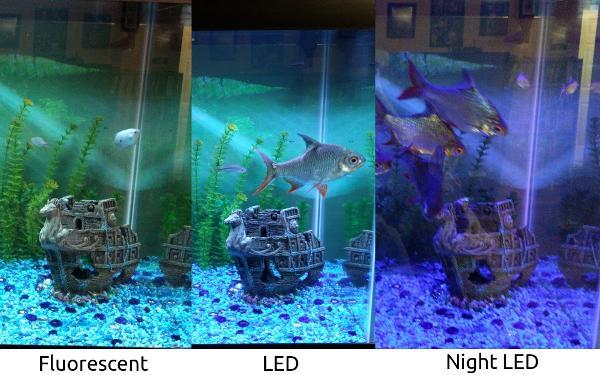 ebay led aquarium light review